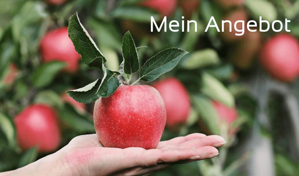 Apfel wird auf einer Hand dargeboten